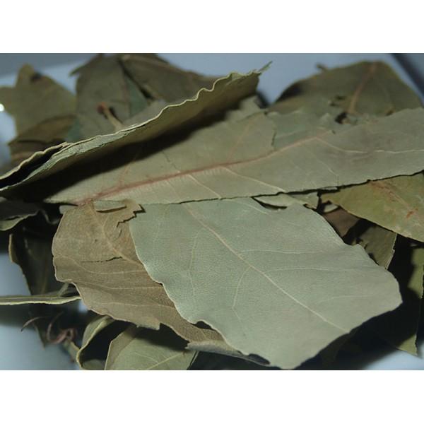 Дафинов лист (Laurus nobilis L.) 5 гр...