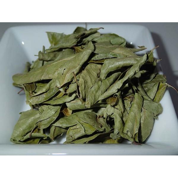 Листа от къри (Murraya koenigii) 5 гр...